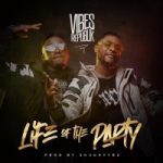Vibes Republik- Life Of The Party